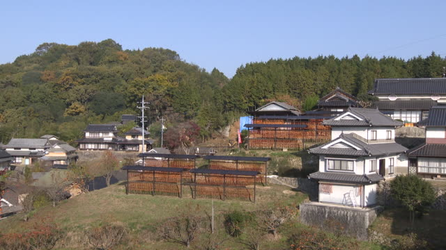 making dried persimmons in hiroshima - onomichi hiroshima stock videos and b-roll footage