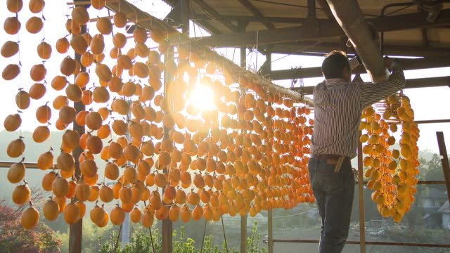 making dried persimmons in hiroshima - dried food stock videos & royalty-free footage