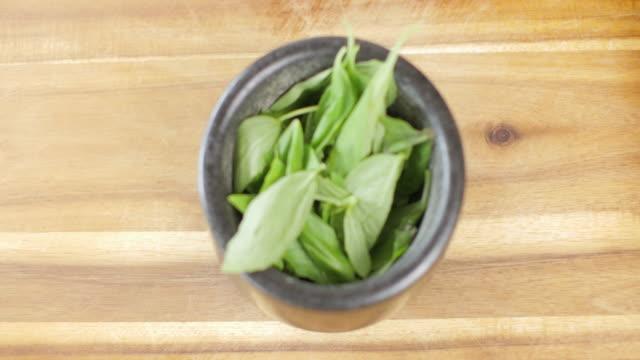 fare salsa di pesto verde - ricetta video stock e b–roll