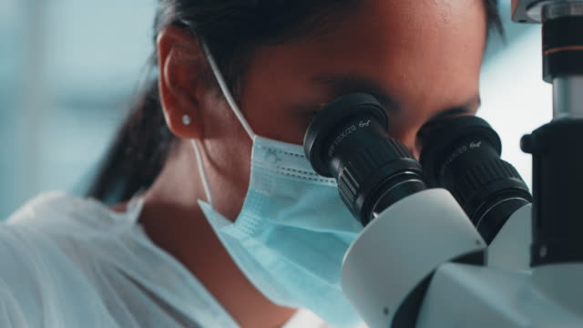 making important discoveries in the face of a novel disease - stem topic stock videos & royalty-free footage