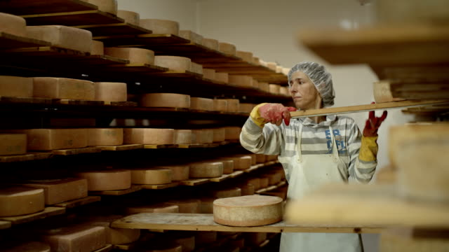 Making of high quality cheese in a small private dairy farm