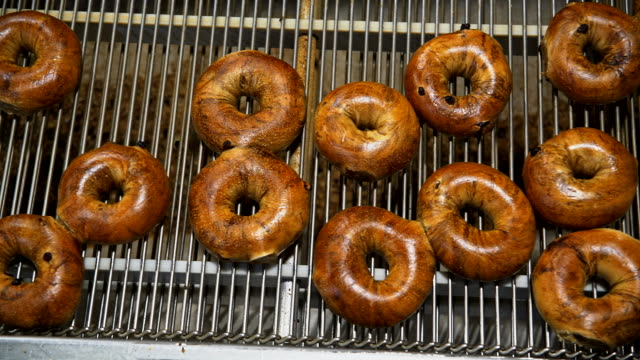 making of the fresh hot tasty bagels at the backery's factory - bagels are transporting for sorting on the conveyor. - bagel stock videos & royalty-free footage