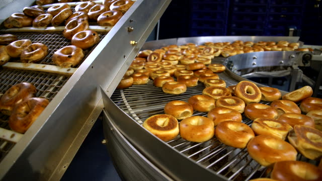 making of the fresh hot tasty bagels at the backery's factory - bagels are transporting for sorting on the conveyor. 4k uhd video with panoramic motion. - food and drink industry stock videos & royalty-free footage