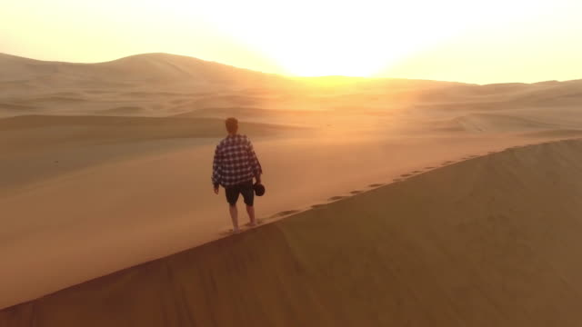 making tracks through the sane - namibian desert stock videos and b-roll footage