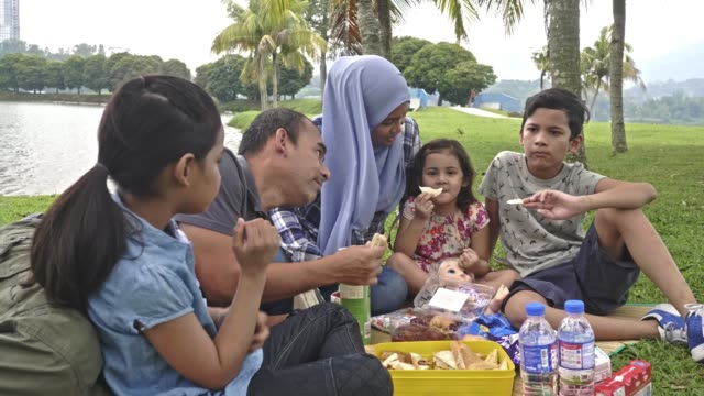 malay family enjoying in the park - malay family stock videos and b-roll footage