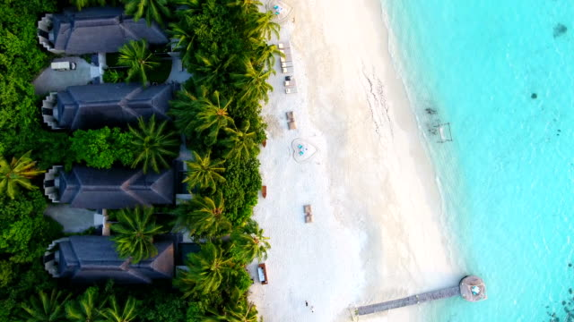 Maldives, blue sky, turquoise sea, white sand and green palm trees.
