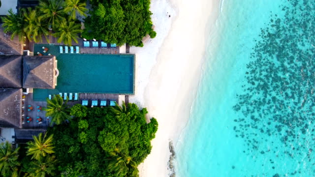 maldives, blue sky, turquoise sea, white sand and green palm trees. - caribbean sea stock videos & royalty-free footage