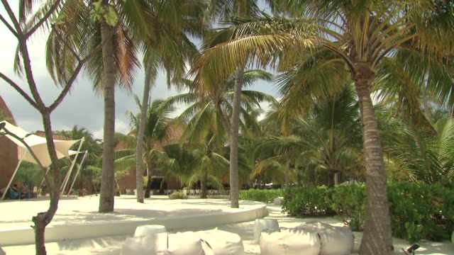 stockvideo's en b-roll-footage met maldives - bedektzadigen