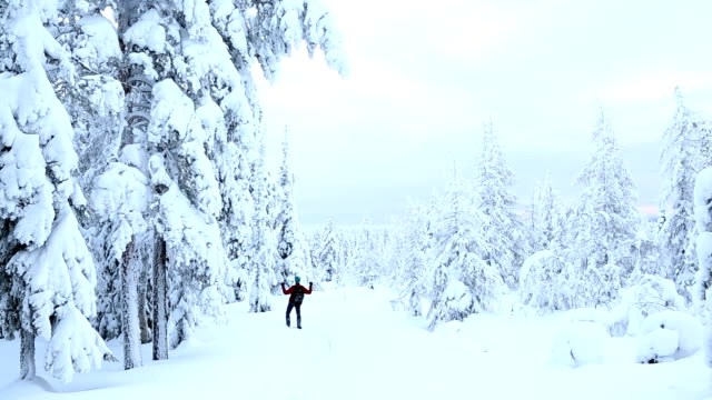 vídeos de stock, filmes e b-roll de male achieving his goals forest walking in winter snow riisitunturi np lapland - peter snow