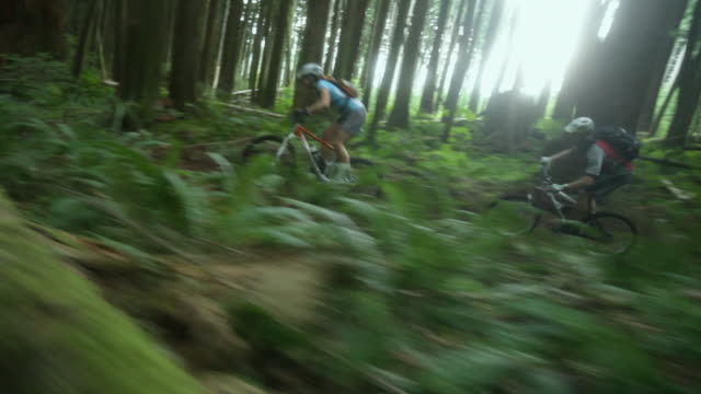 ws pan male and female biker mountain biking through forest / squamish, british columbia, canada - mountain biking stock videos & royalty-free footage