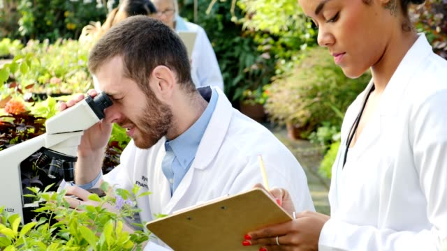 Male and female botanists analyze plant samples