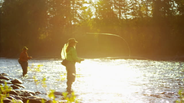stockvideo's en b-roll-footage met male and female freshwater fly fishing sunrise canada - hengel uitwerpen