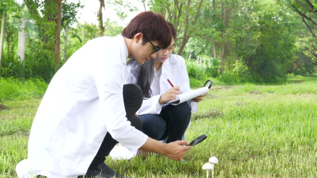 Male And Female Scientists Researching Mushroom
