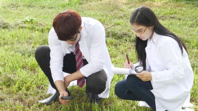 Hombres y mujeres científicos investigando seta