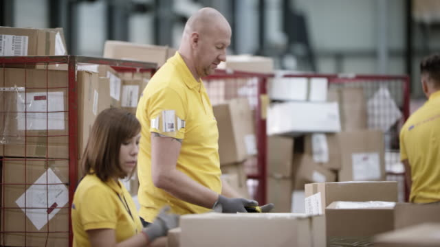 Male and female workers scanning and sorting packages in the warehouse