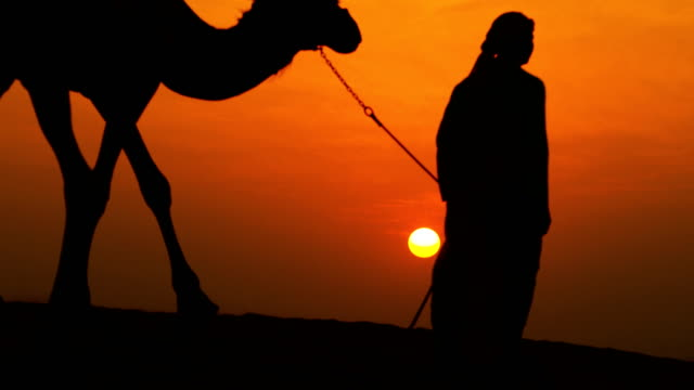 Male Arab Leading Camels over Sand Dunes Silhouette