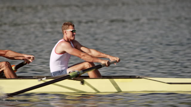 ts male athlete rowing with his team in a coxless four in sunshine - scull stock videos & royalty-free footage