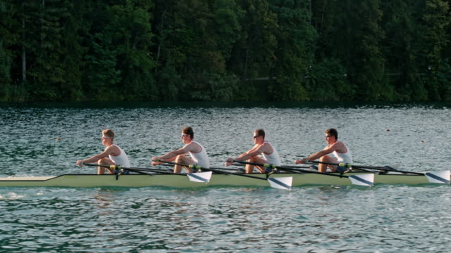 vídeos de stock e filmes b-roll de slo mo male athletes sculling on a lake in a quad scull - interatividade