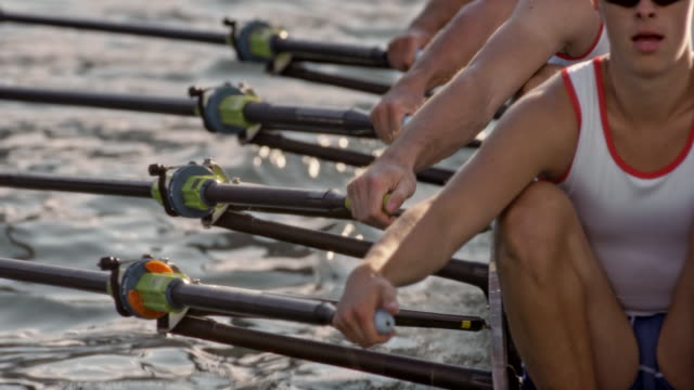 slo mo male athletes sculling on a lake, striking water with cleaver sculls - repetition stock videos and b-roll footage