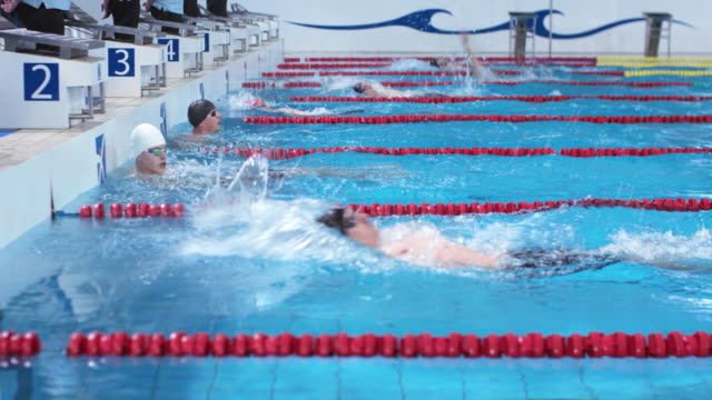 stockvideo's en b-roll-footage met ds male backstroke style swimming competition finish - binnenbad