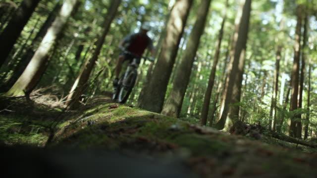 WS Male biker mountain biking through forest / Squamish, British Columbia, Canada