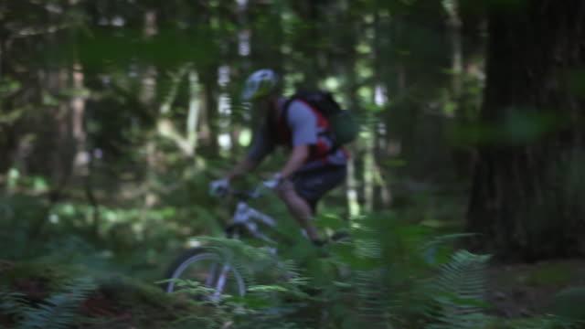ws pan male biker mountain biking through forest / squamish, british columbia, canada - squamish stock videos & royalty-free footage