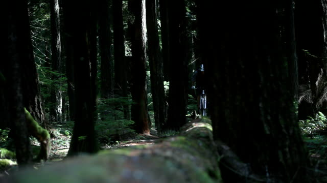 ws td r/f male biker mountain biking through forest / squamish, british columbia, canada - one mid adult man only stock videos & royalty-free footage