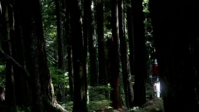 ws td r/f male biker mountain biking through forest / squamish, british columbia, canada - squamish stock videos & royalty-free footage