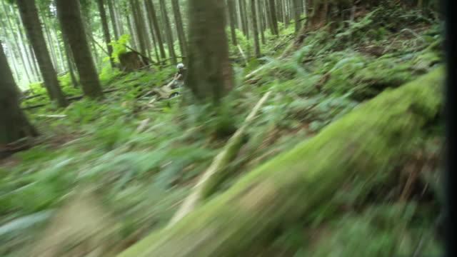 WS PAN POV Male biker mountain biking through forest / Squamish, British Columbia, Canada