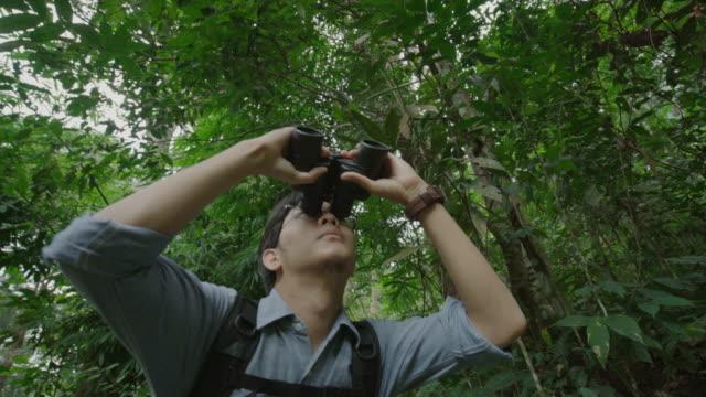 stockvideo's en b-roll-footage met mannelijke vogels kijken met een verrekijker in de natuur - vogelen
