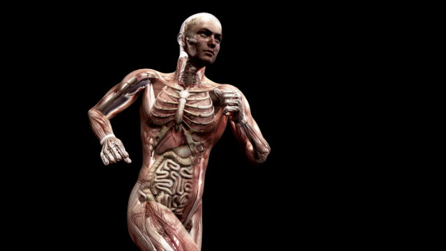 male body running - figura maschile video stock e b–roll