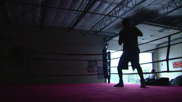 vídeos de stock e filmes b-roll de male boxer in silhouette shadowboxing in warehouse ring, overhead door open bg. - lightweight