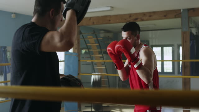 male boxer practicing with his coach at gym - boxing ring stock videos and b-roll footage