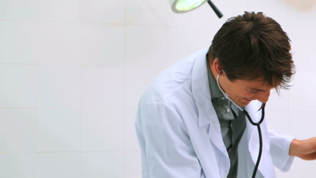 male doctor auscultating the pregnant belly of a smiling patient - gynecological examination stock videos and b-roll footage