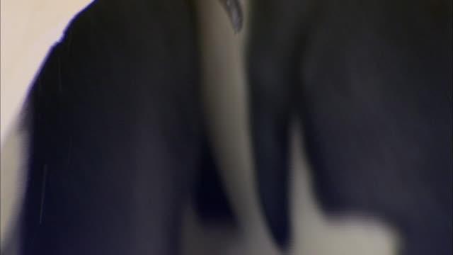 male emperor penguin eating snow - 水の形態点の映像素材/bロール