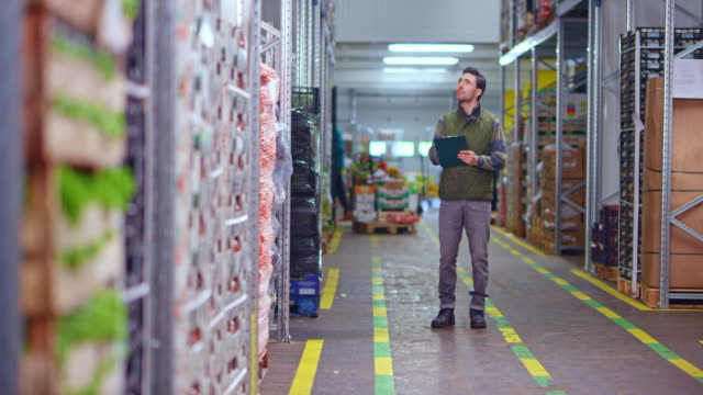 ds male employee doing an inventory of the fresh produce on the racks in the fresh produce warehouse - full length stock videos & royalty-free footage