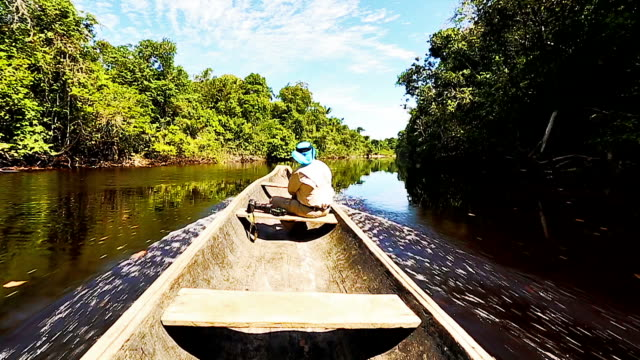 hd male explorer sailing on indigenous canoe in the amazon - kayak stock videos & royalty-free footage