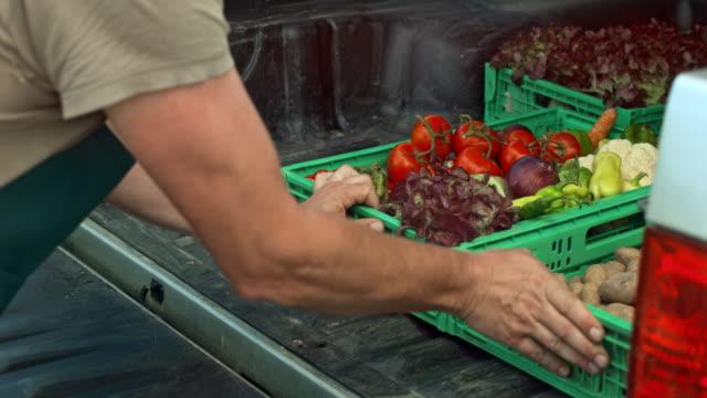 vídeos y material grabado en eventos de stock de hombre campesino cargando su camioneta con producir en cajones - vegetal con hoja