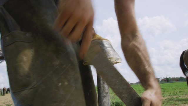 a male farrier in his thirties uses a rasp to file a brown horse's foot and a knife to clean it outdoors in a pasture on a farm on a sunny day - ferro di cavallo accessorio per animali video stock e b–roll