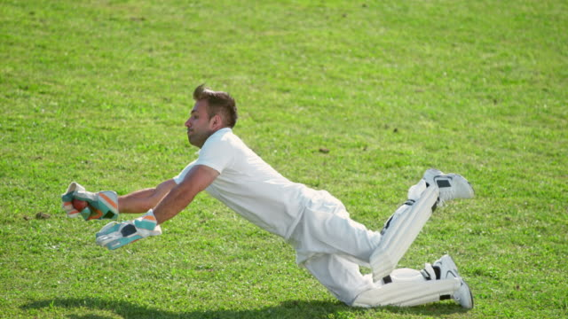 slo mo male fielder jumping to the side and catching the cricket ball - cricket video stock e b–roll