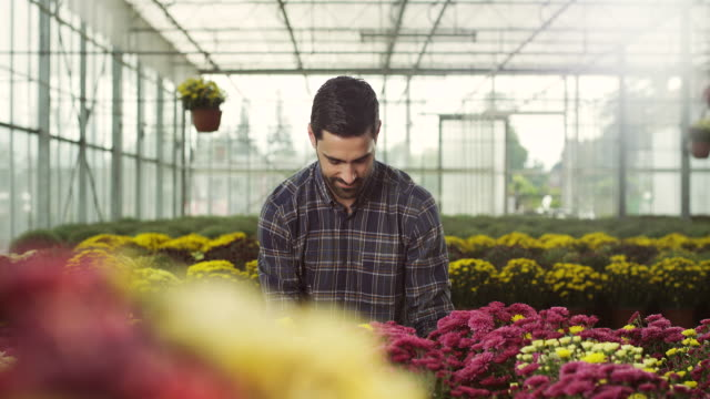 Male florist at greenhouse