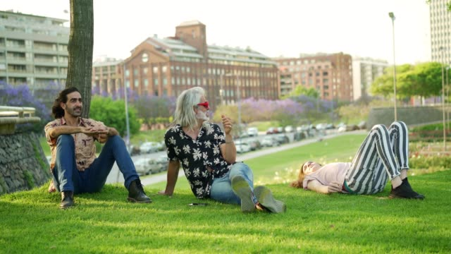 芝生の上でリラックスする男性の友人 - プエルトマデロ点の映像素材/bロール