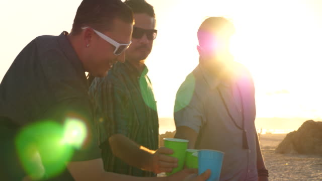 ms male friends toasting drinks during beach party - refreshment stock videos & royalty-free footage