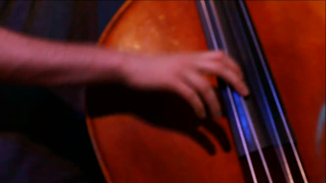 male hand & arm playing string, double, upright bass. performer, music, string instrument, jazz. note: some camera movement. - string instrument stock videos & royalty-free footage