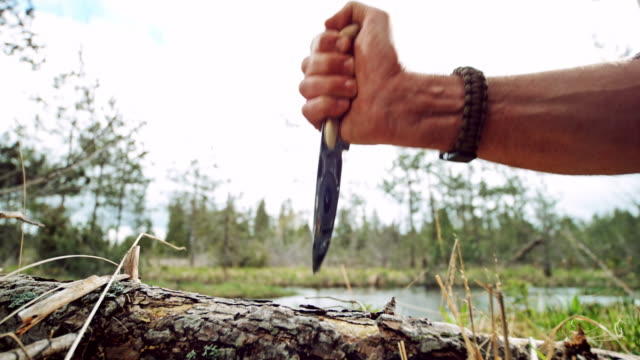 slo mo ld male hand sticking a knife into a trunk of a fallen tree - survival stock videos & royalty-free footage