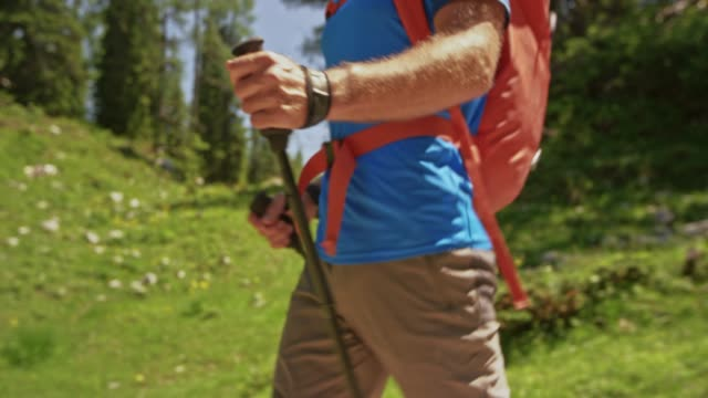 ts male hands holding trekking poles while hiking the mountain - hiking pole stock videos and b-roll footage