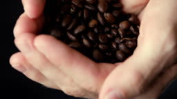 Male hands strewing harvest coffee granules from palm