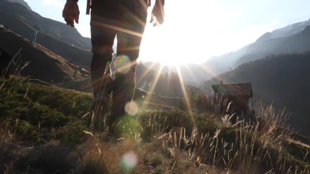 男性ハイカーが芝生の丘、日の出、山を上る - 中年の男性だけ点の映像素材/bロール