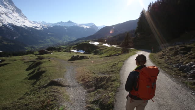 male hiker descends track through mountain meadow, sunrise - direzione video stock e b–roll