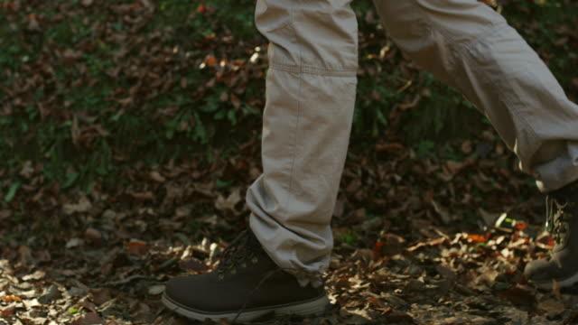 vídeos y material grabado en eventos de stock de hombre caminante en el sendero de montaña - pata de animal pierna